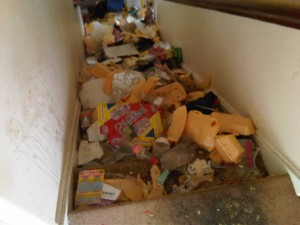 Photo of a dirty stairwell